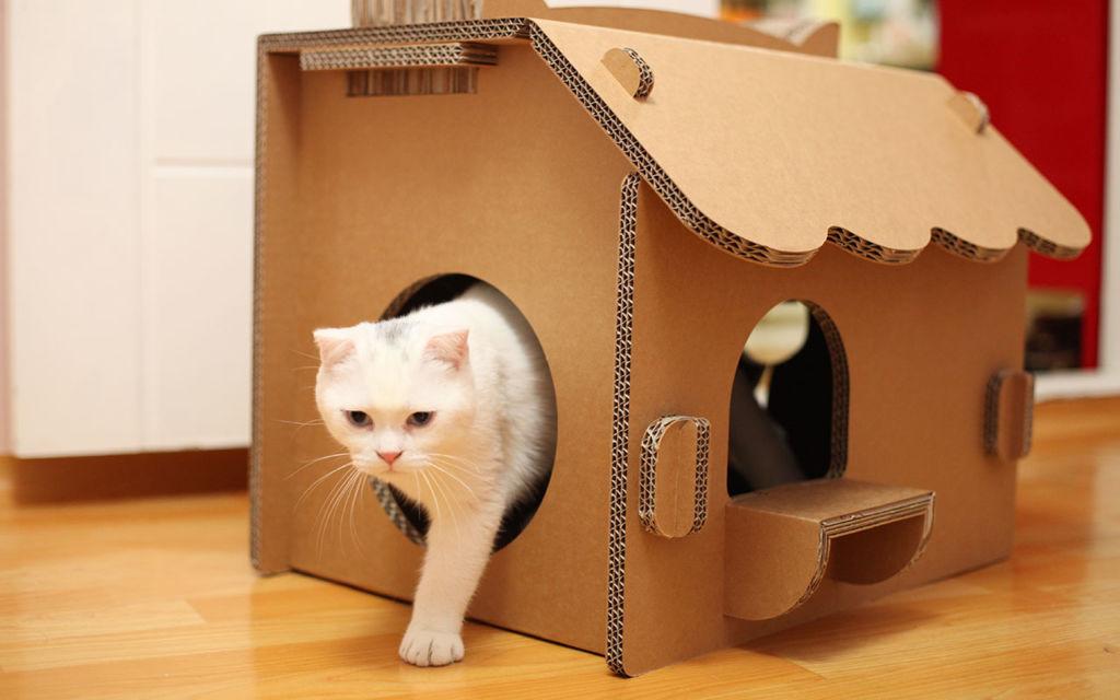 Выбираем домик для кошки: 5 важных нюансов