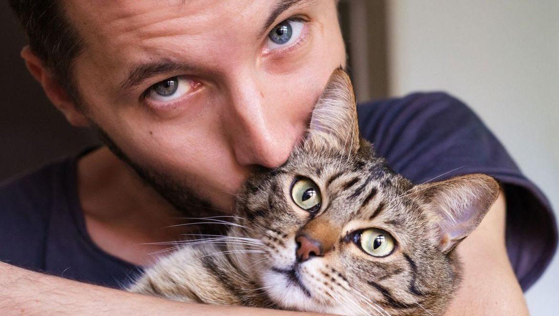 Способны ли коты запоминать лица людей