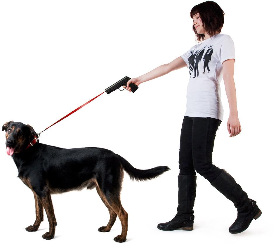 Виды поводков для собак и особенности при их выборе