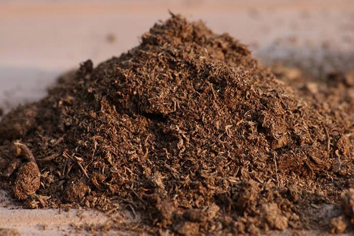 Опытные птицеводы используют в качестве очень удобного и высокоэффективного материала для утепления курятников моховой торф