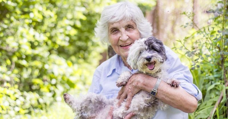 Пенсионерка принесла в клинику старую собачку, оказалось, что помощь нужна была не животному