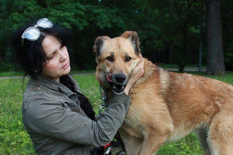 Собака так хочет, чтобы ее забрали из приюта, что научилась танцевать: очаровательное видео